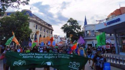 Inconstitucionalidad del aborto: en Salta no se habilitará la feria para tratarlo