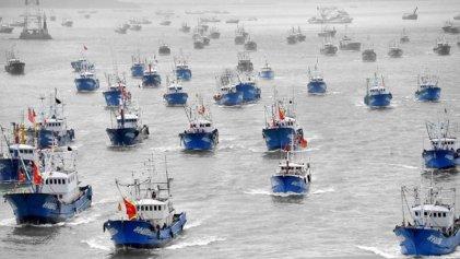"""""""Descontrol pesquero"""" en mar argentino: 470 barcos extranjeros en una zona ecológica clave"""