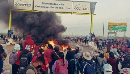Trabajadores agrarios de Perú luchan contra ley laboral heredada del fujimorismo